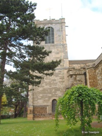 Biggleswade - St Andrew. West tower from the south.